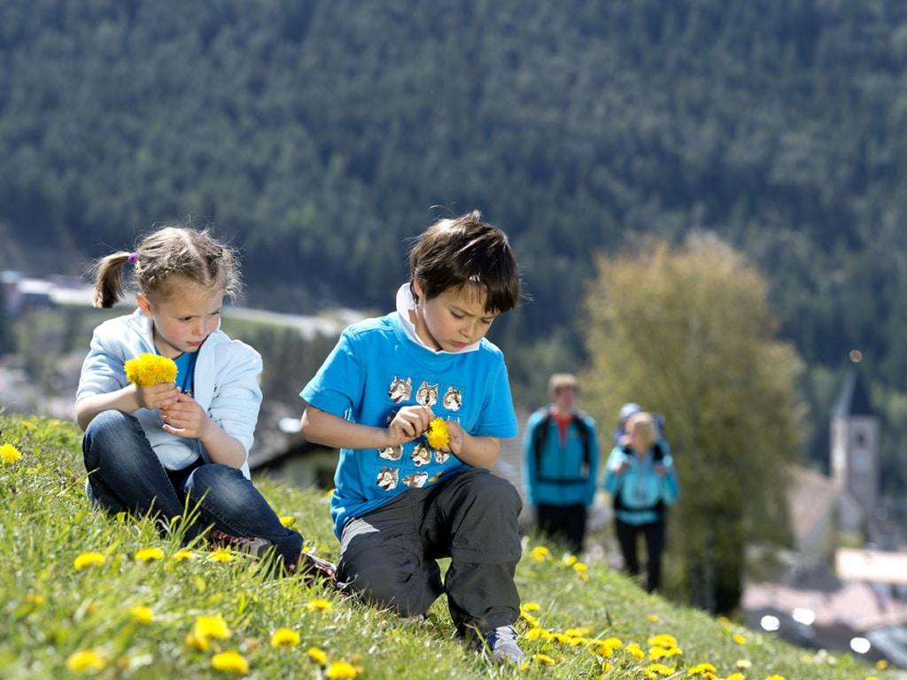 spring-alpe-di-siusi-holiday